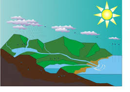 the water cycle free printable worksheets and teaching resources