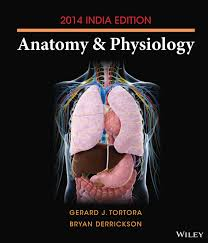 human anatomy and physiology marieb 9th edition lab manual pdf