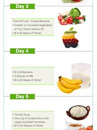diet plans infographics visual ly