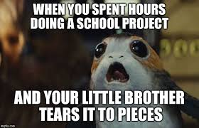 Internets Meme - may the porg be with you 15 porg memes that broke the internet