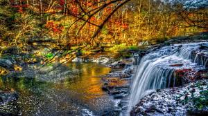 beautiful clear plants trees waterfall green lake water