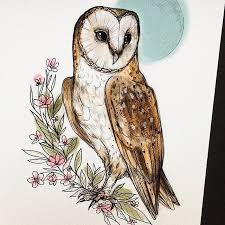11419 best love for owls images on pinterest owls owl art and