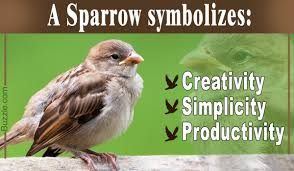 in house meaning the beautiful and powerful symbolic meaning of sparrows