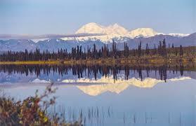brilliant colors of denali national park alaska wallpapers denali national park alaska exploring america u0027s last great frontier