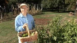 how to winterize your vegetable garden u2013 monkeysee videos