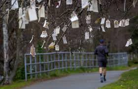 wishing tree speaks to dreams hopes of passers by the seattle