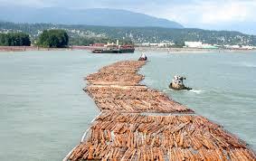 best canadian hardwood flooring manufacturers laminate wood