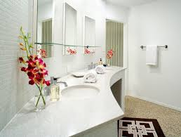 Bathroom Design Nyc by Download Home Design Bathroom Gurdjieffouspensky Com