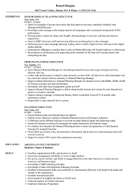 resume template for managers executives den planning executive resume sles velvet jobs