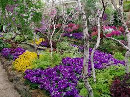 Australian Garden Flowers by Beautiful Flower Melbourne Ergonomic Beautiful Floor Lamps 65