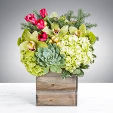 flower delivery san antonio succulents flower delivery in san antonio heavenly floral designs