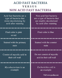 difference between acid fast and non acid fast bacteria