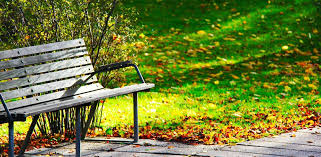 Old Park Benches Wwp 3 Never Underestimate The Lives Of Old Men Sitting On Park