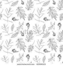 seamless pattern floral elements organic ornament stock vector