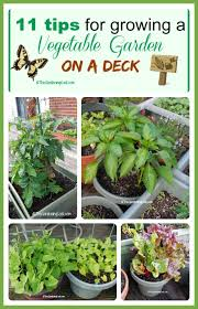 best 25 vegetable planters ideas on pinterest box garden