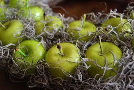 thrifty diy apple wreath hometalk