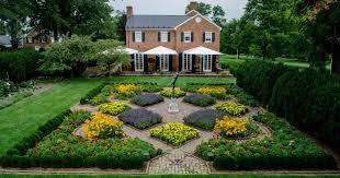 msv garden blog