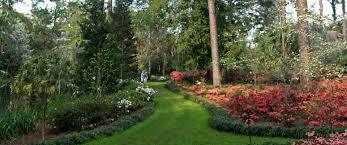 Garden Of Eden Craft - florida state parks