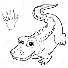 Empreinte De Patte Avec Crocodile Coloriage Vecteur Clip Art Libres