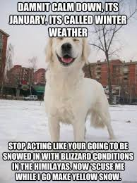 Funny Snow Meme - funniest snow memes ever lmao pinterest memes snow and humor