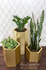 exterior gold hexagon planters unique planters wicker planters