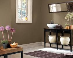 Bathroom Wall Color Ideas Bathroom Wall Paint Ideas Home Design Ideas And Pictures