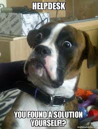 Help Desk Meme - helpdesk you found a solution yourself skeptical dog make a meme