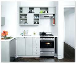 No Door Kitchen Cabinets Kitchen Cabinet Doors Orlando Great Cabinets No Depot Restaurant