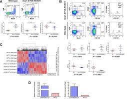 infection exposure promotes etv6 runx1 precursor b cell leukemia