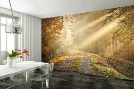 expomural incredible hd photo wall murals for your walls auto