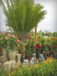 it u0027s not work it u0027s gardening greenscape gardens part 2
