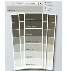 weird paint color names gray horse lovely traub life