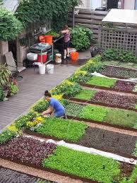 layout of kitchen garden garden ideas vegetable garden design ideas backyard vegetable