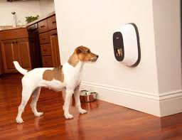 12 smart home gadgets to keep you safe and secure u2013 gadget flow