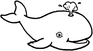 aneka contoh sketsa gambar hewan nan lucu warnagambar
