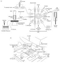 micro sequential injection automated insulin derivatization and