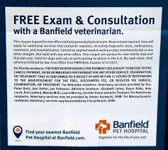 bamboozled dog owner blindsided by surprise bill for u0027free exam