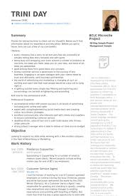 Sample Freelance Writer Resume by 28 Copywriter Resume Template Senior Copywriter Resume Samples