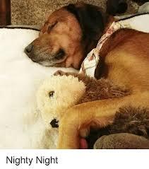 Nighty Night Meme - nighty night nighty night meme on astrologymemes com