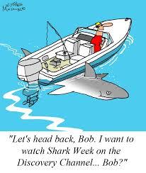 Shark Week Meme - the 25 best shark week memes ideas on pinterest shark week