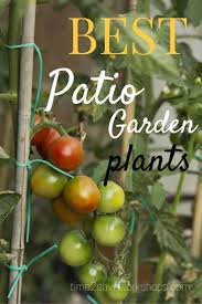 Miracle Grow Patio by 43 Best Growing Your Own Food Images On Pinterest Gardening