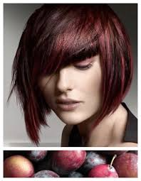 brown plum hair color hair color inspiration formulation sugar plum stylenoted