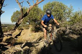 blm partners with mountain bikers to combat illegal trails u2014 high