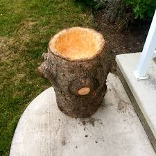 tree stump planters diy log planters joy of simplicity