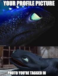 Toothless Meme - image tagged in toothless how to train your dragon imgflip