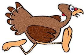 scvnews nov 24 coc to host thanksgiving day turkey trot