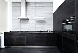 White Kitchen Cabinets And Black Countertops Modern Black Kitchen Cabinet Best Black Kitchens Ideas On Navy