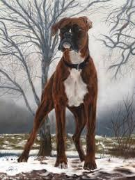 boxer dog uk image from http rlv zcache com