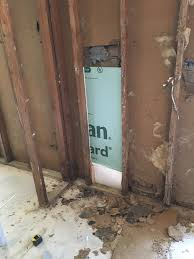 Fungicidal Wash For Interior Walls Faqs After Gutting A Flooded Home