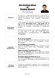 exles of professional resume it professional resume jcmanagement co